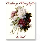 logo un_bouquet_des_pivoines_par_pierre_joseph_redoute