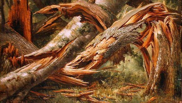 alexandre-calame-arbre