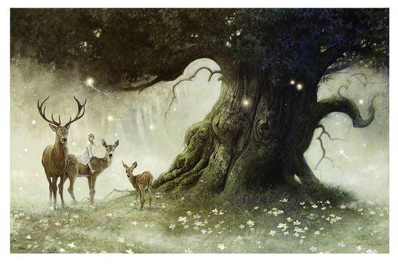 fairy-dawn.jpg