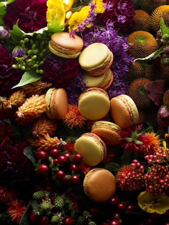 macaron_jardin_d_automne_collection_les_jardins_pierre_herme
