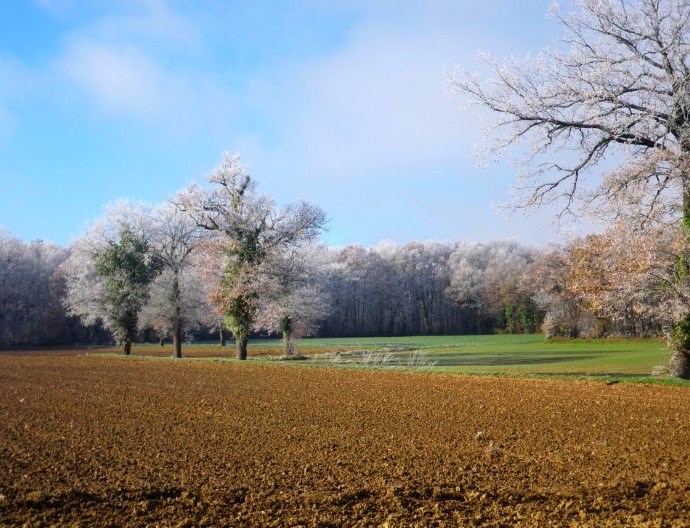 campagne-12-16-1
